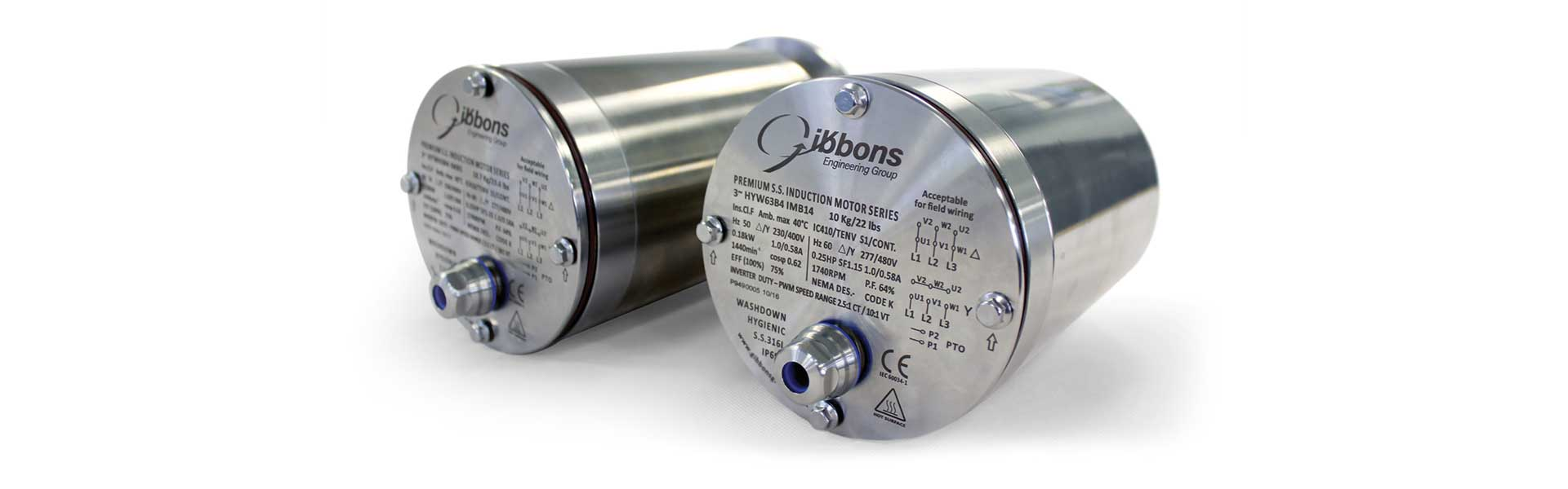 Motors for Food and Beverage Industry