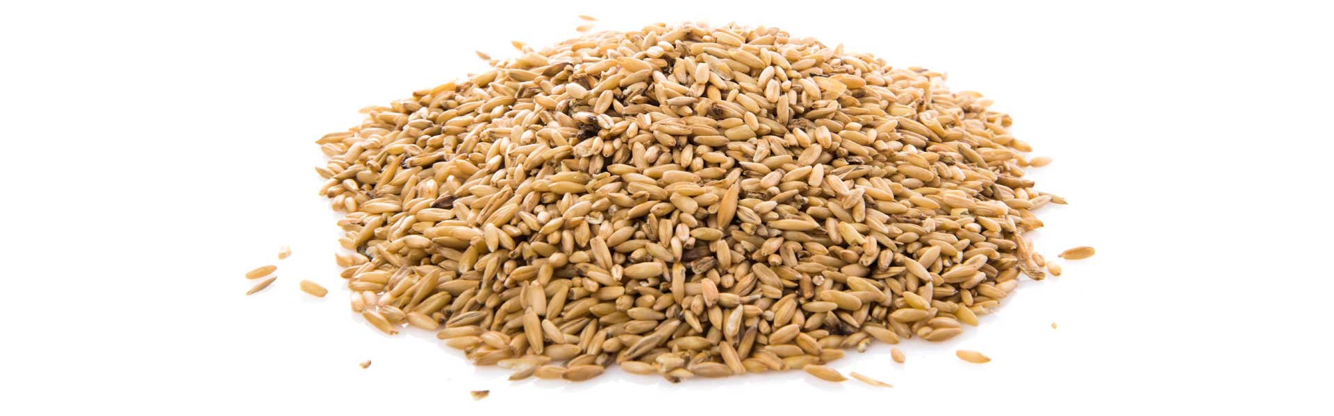 Why does stored grain need to be kept ventilated?