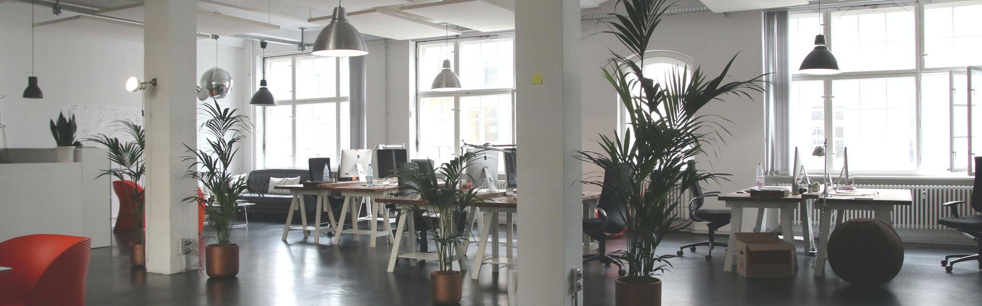 Empty office environment